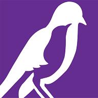 mockingbirdlogo
